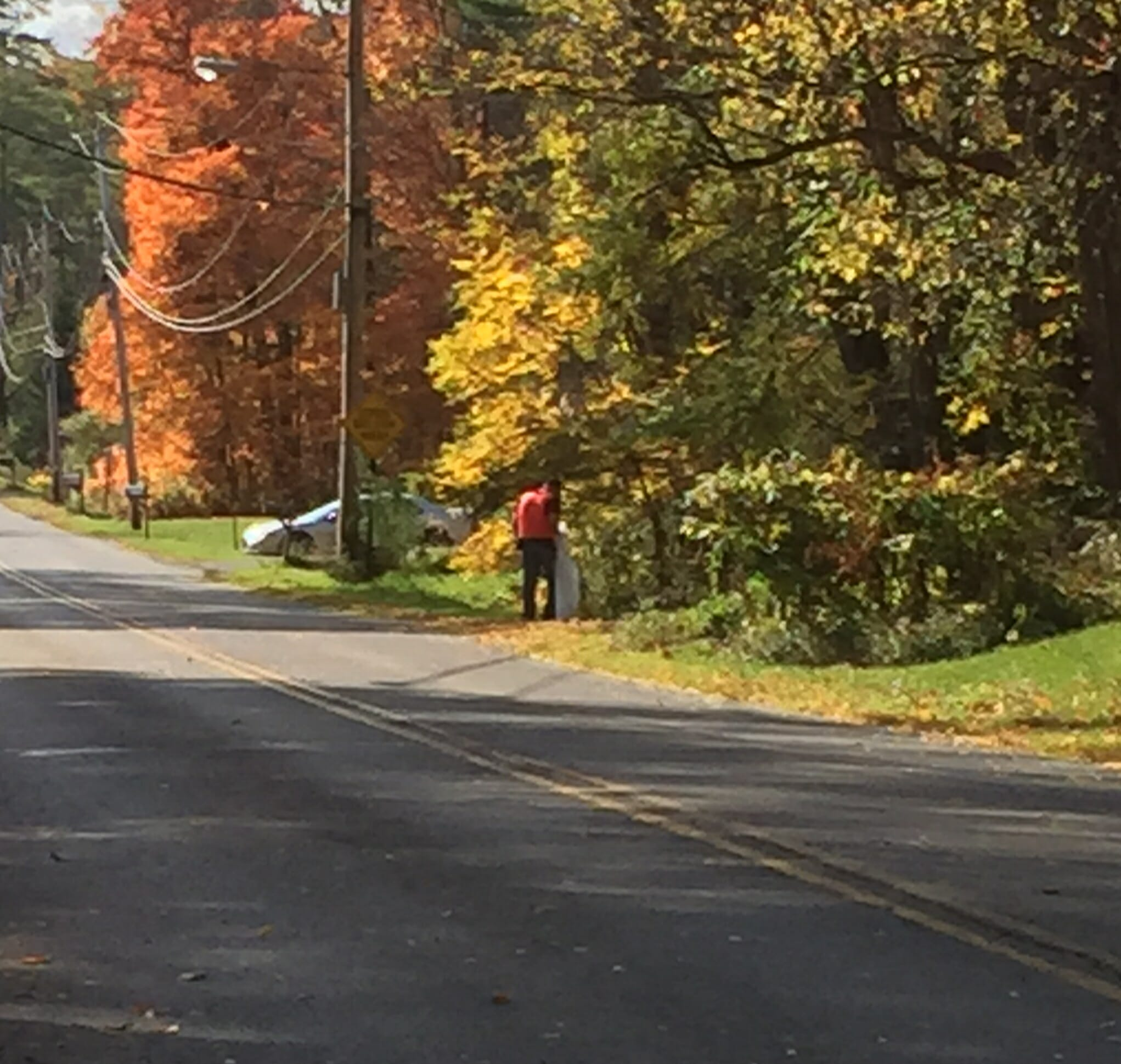 Person cleaning up roadside trash