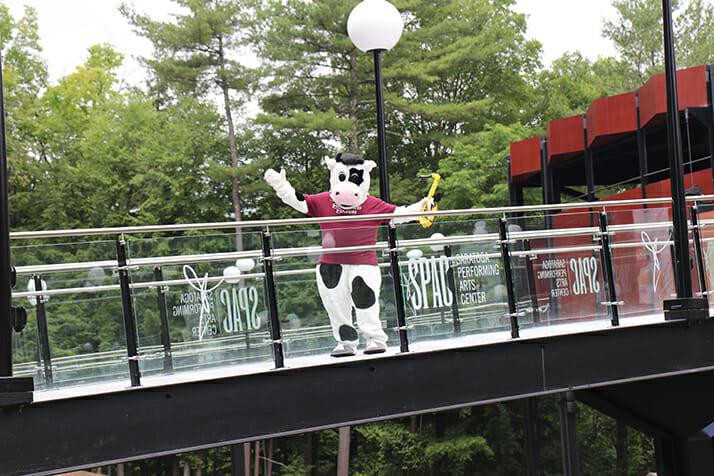 flavor mascot on bridge