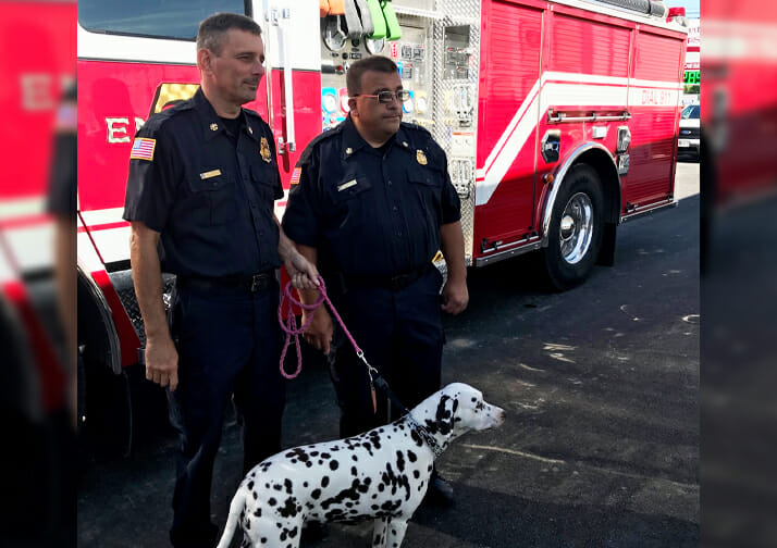 firefighters with dalmation