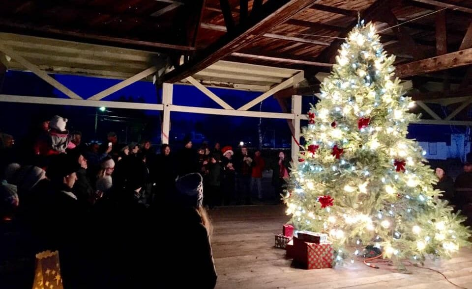 Crowd watches a tree lighting ceremony.