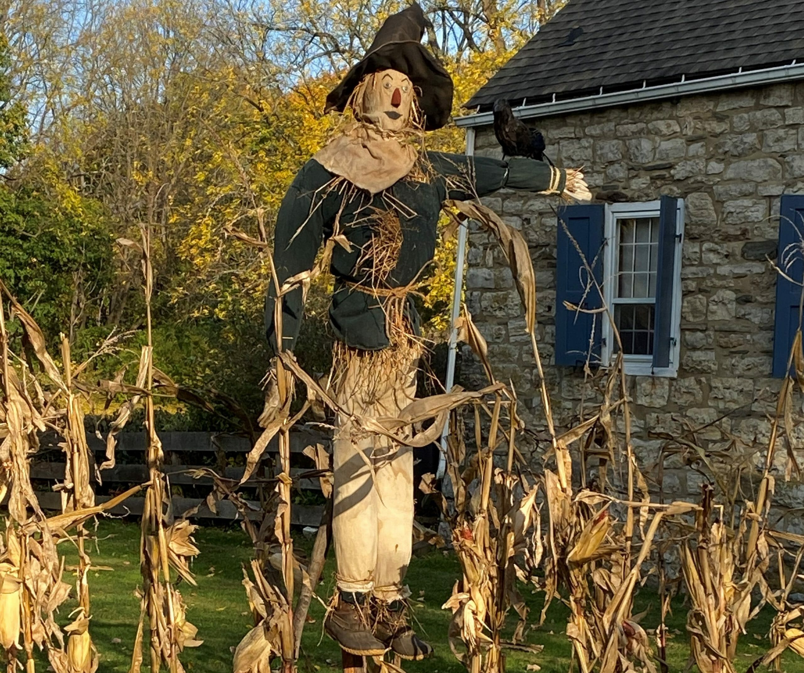 Scarecrow with fake bird in arm