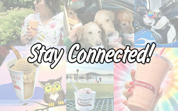 Stay Connected with images from social media